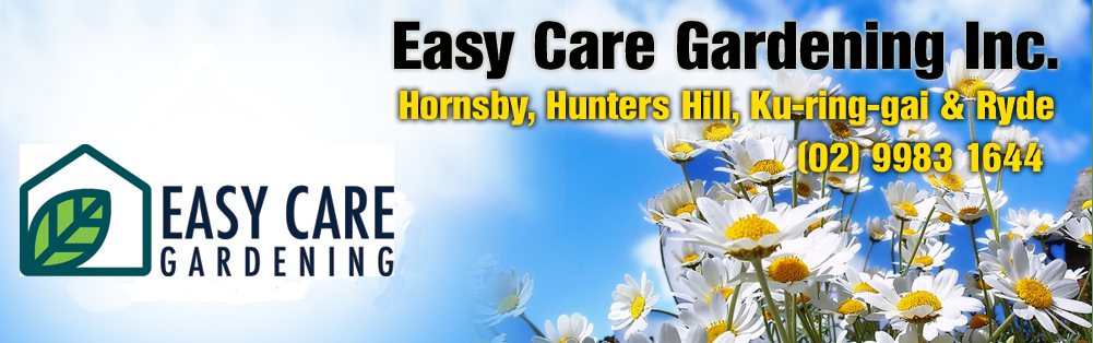 Easy Care Gardening Inc Volunteer Gardening For Pensioners